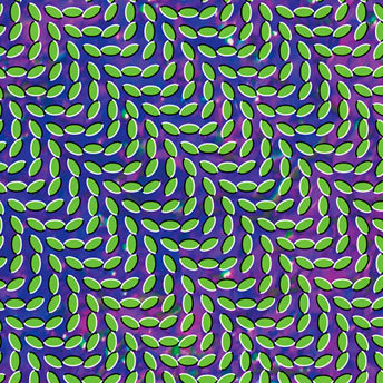 animal collective merriweather post pavillion album cover