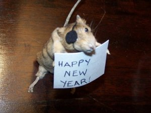 happy new year pirate rat
